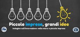 piccole imprese grandi idee